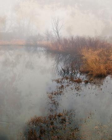 River Meadow Brook in Fog