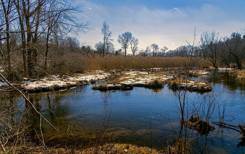 Springtime Stony Brook I