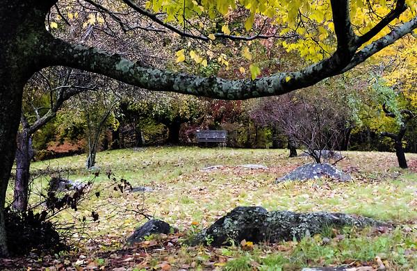 Bartlett Park in Fall