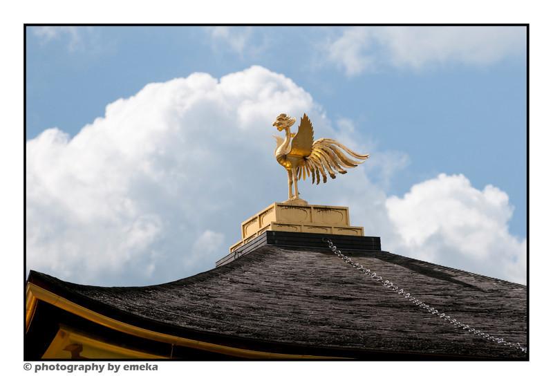 Kinkakuji's golden phoenix, sitting atop the pavilion.