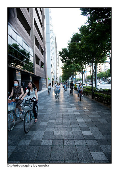 Dodging the bicycles as they ride down Oike-Dori, Kyoto.