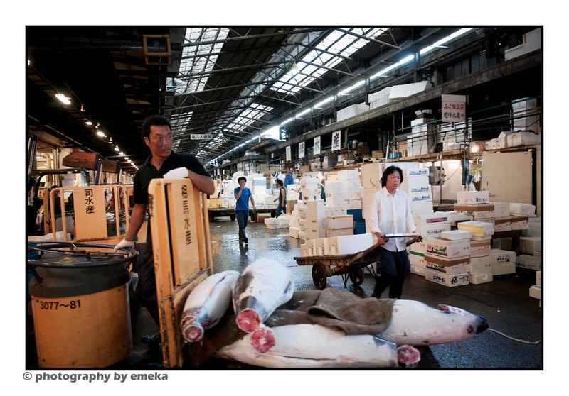 Workers at Tsukiji Fish Market, Tokyo