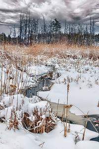 Deep Brook in Winter