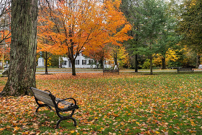 Bench on the Common