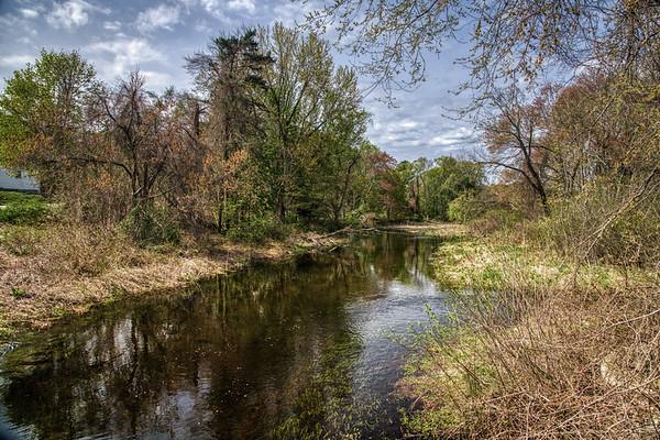 Stony Brook - Springtime