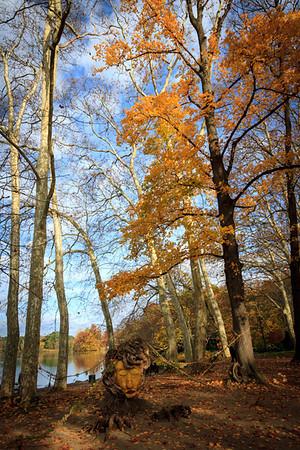 Parc de la Tête d'Or en automne