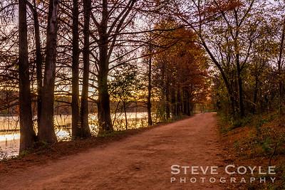 Evening Trail