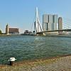 Erasmus Bridge - Kop van Zuid - Rotterdam