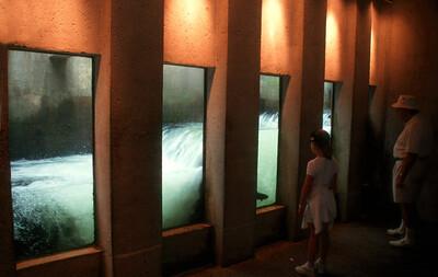 Fish Hatchery