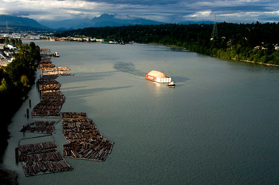 Many booms of logs are stored along the fraser river for manufacturing in lumber mills. New Westminster as the Backdrop