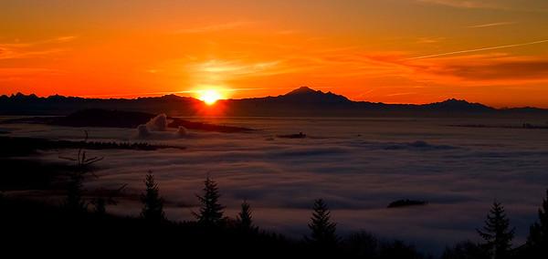 sun rising above the fog