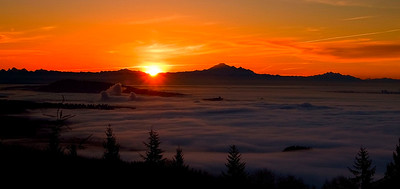 sun rising above the fog