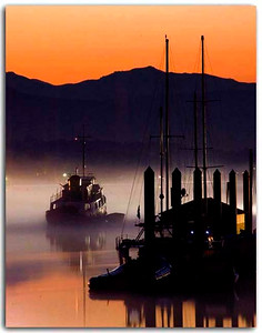Leaving. lovely misty morning on the fraser River in Fort Langley, B.C., Canada