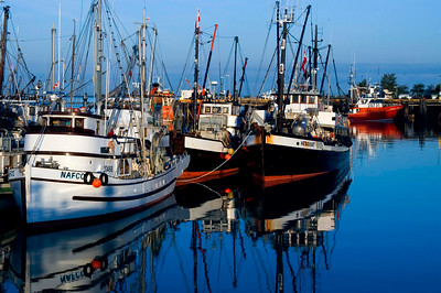 Fishing boats at Steveston Harbour at morning hours