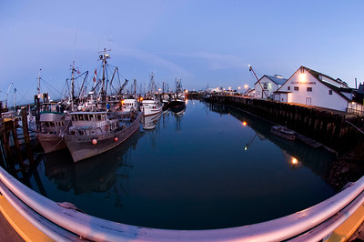 Fishing boats at Steveston Harbour