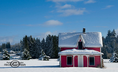 little red house in snow