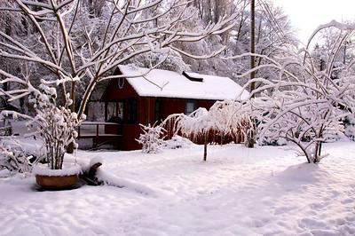Glorious Winter