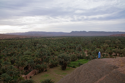 The Draa Valley
