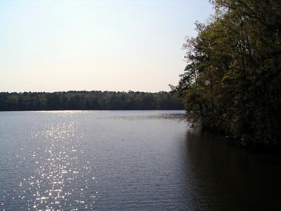 Lake Johnson from Boardwalk