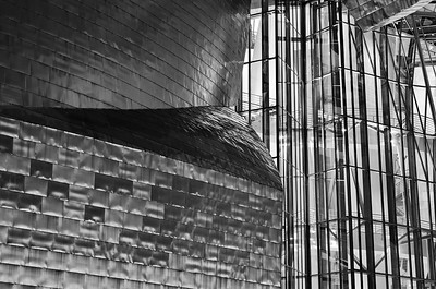 Detail of Guggenheim Museum in Bilbao