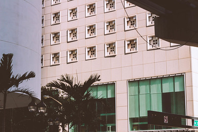 A tropical concrete jungle, Miami is hot, alluring and replsive all in the same sip.