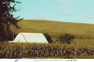 Lyrical Landscapes, Iowa, USA, Jeanette Lamb, Graffiti Goose Photography