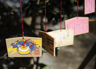 Ema are wooden plaques on which people will write their wishes. The images often reflect the shrine or temple where they are sold. In this case, Enoshima is associated with the quelling of a destructive dragon, hence the ema depicts such a creature. The wishes range from success in school exams to good health, safe child birth, and so on.