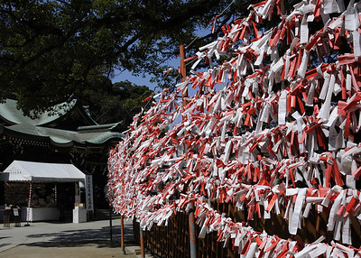 Many fortunes (imikuji おみくじ) tied to polls before the shrine.  Visitors to such sites often offer 100 yen for a paper fortune. Once the fortune is read, one can leave it at the shrine by tying it to a tree branch, or in this case, wires put out especially for this purpose.