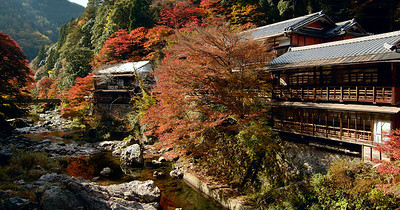 Old inn on the Kiyotaki River, Kyoto.