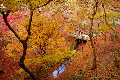 Tofukuji grounds. Kyoto