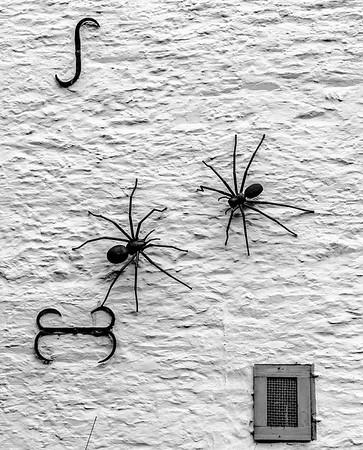 Spider Chase