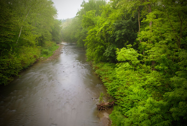The Little Cuyahoga