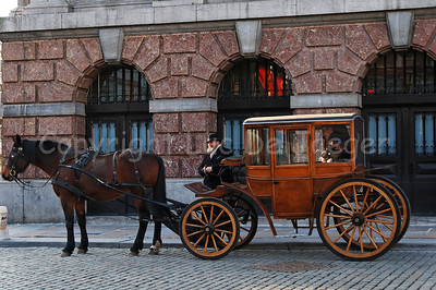 Horse and carriage in front of the Town Hall in Antwerp (Antwerpen), Belgium.