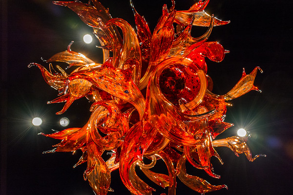Chihuly underbelly