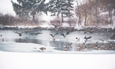 Touchdown in Esker Lake