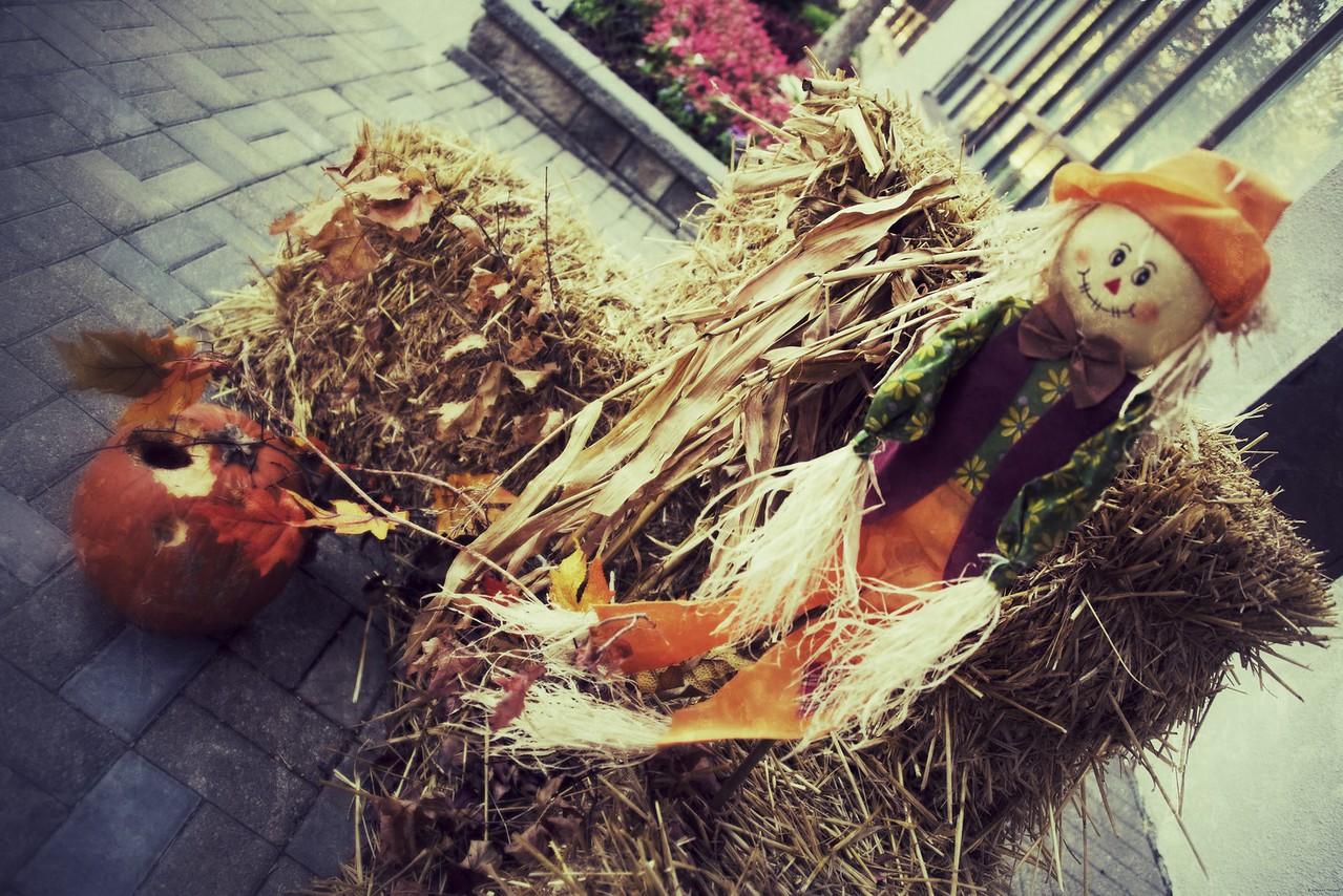 Halloween in the neighbourhood, Brampton