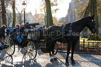 A horse and carriage that guide you through Bruges (Brugge), Belgium, captured at the Wijngaardplein late in the afternoon. On this square the horses eat, drink and rest for awhile.