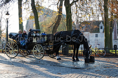 A horse and carriage that guide you through Bruges (Brugge), Belgium, at the Wijngaardplein, captured late in the afternoon. On this square the horses eat, drink and rest for awhile.