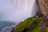 Niagara Falls Viewing Platform