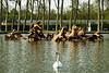 Versailles FR (May) 10