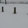 03-08-08 Dayton 21 snow Washinton Park