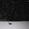 03-24-13 Dayton 11 snow