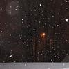 03-05-13 Dayton 06 snow