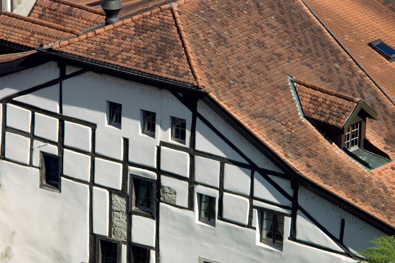 Half timbered work (as seen from the Route des Alpes)<br /> Konica Minolta Dimage A2