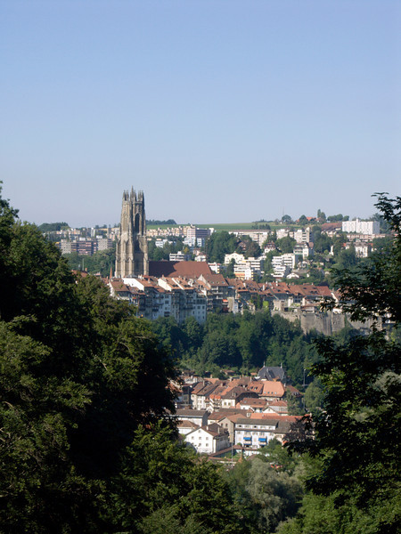 Fribourg - Neuveville, Bourg & Cathedral St. Nicolas, Schönberg (as seen from Boulevard de Perolles)<br /> Konica Minolta Dimage A2