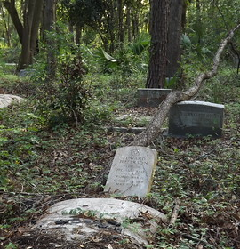 Abandoned & Forgotten: Moncrief Road Cemeteries