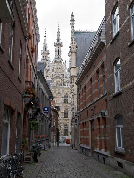 Eikstraat, Leuven<br /> Olympus E-420 2.8-4.0
