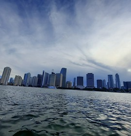 Sights and Scenes: Downtown Miami