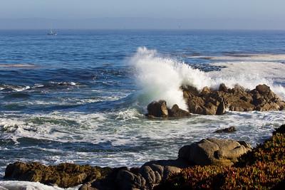 Monterey Ca 066