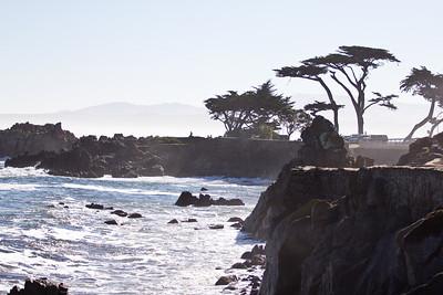 Monterey Ca 297